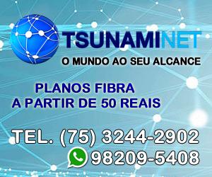 Tsunami Net