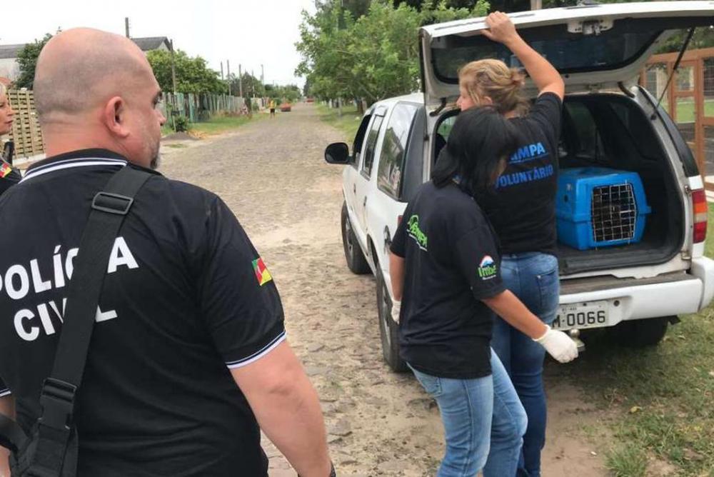Polícia encontra cães congelados em freezer no Rio Grande do Sul; veja