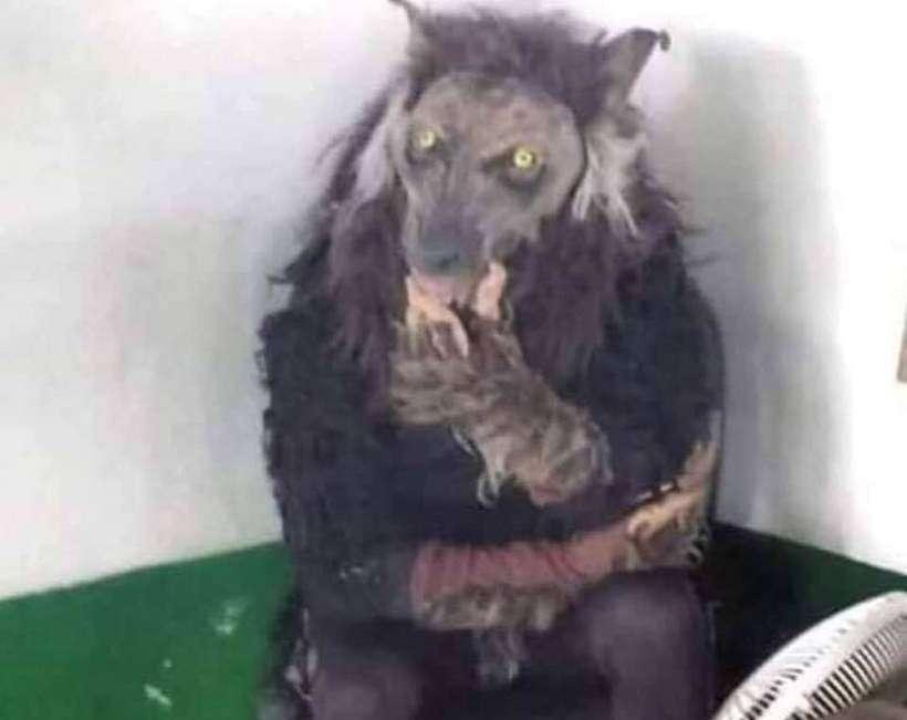 Homem vestido de lobisomem teria sido detido em Bom Repouso; foto foi compartilhada nas redes sociais