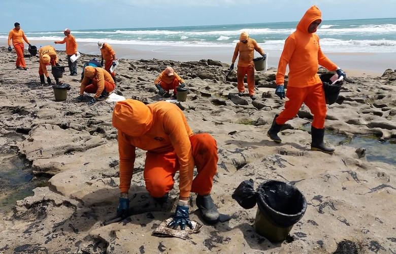 Óleo foi derramado entre 600 e 700 km da costa nordestina, apontam pesquisadores da UFRJ