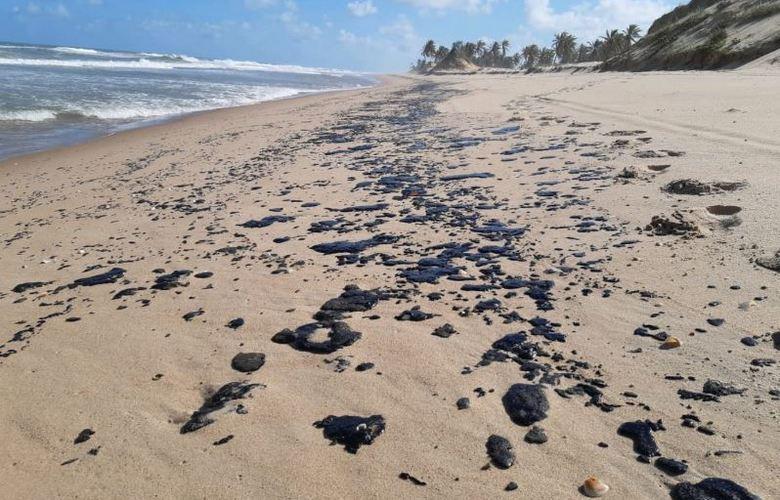 Localidades afetadas pelo vazamento de óleo chegam a 607, segundo Ibama